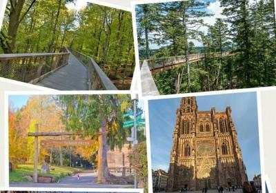 Екскурзия до Шварцвалд и Страсбург 29.04-02.05